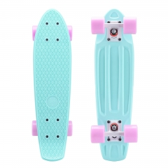 Playshion 22 Inch Mini Cruiser Skateboard for Beginners and Kids